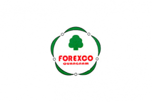 Forexco vn